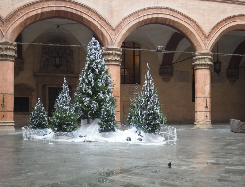 Christmas 2014: the initiatives for the holiday in Bologna